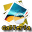 /sites/default/themes/acquia_marina/images/galleria.png